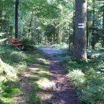 Foto Rotenbergweg