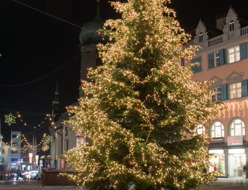 Langenegger Christbaum am Leutbühel