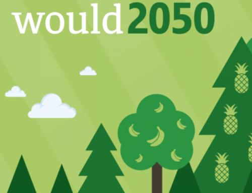 Waldrand: wichtiges Bindeglied zwischen Wald und Wiese