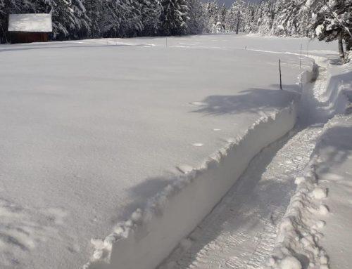 Winterwanderweg durchs Nord ist präpariert