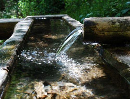 Online-Voting für die besten Wasserprojekte